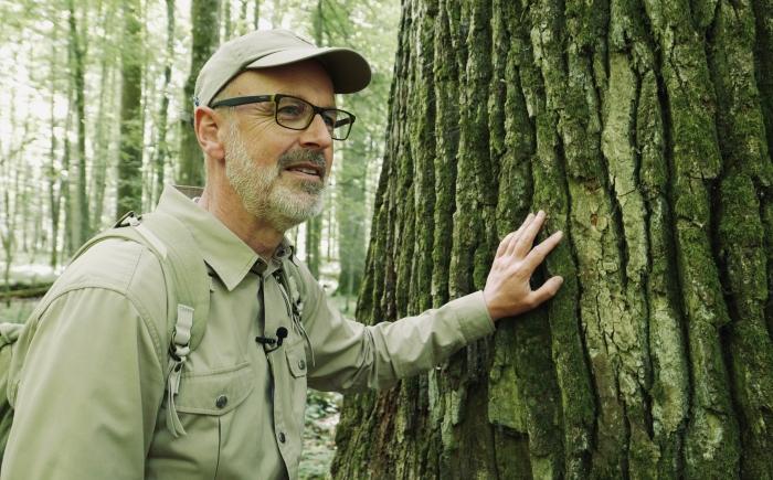 """Autor Peter Wohlleben lehnt in seinem neuen Film """"Das geheime Leben der Bäume"""" an einem Baum im Wald."""