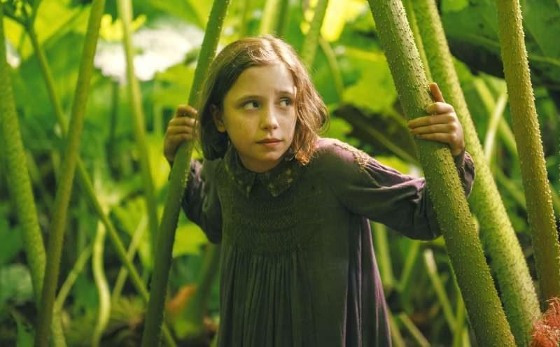 Der geheime Garten. Die 10-jährige Marry in einem Urwald aus Gras.